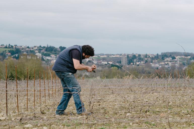 Episode 1 : La taille des vignes avec Emmanuel Merceron